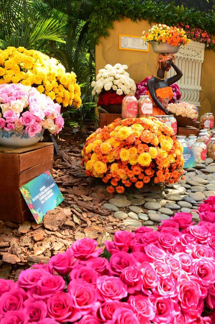 Festival de las flores display     I Feria de  Las Flores Medellin I Flower Festival Medellin I flowers I colorful flowers I colourful  flowers