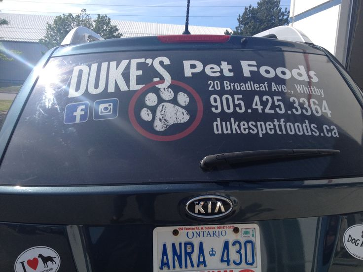 Best Vehicle Wraps  Graphics Images On Pinterest Vehicle - Auto window graphics