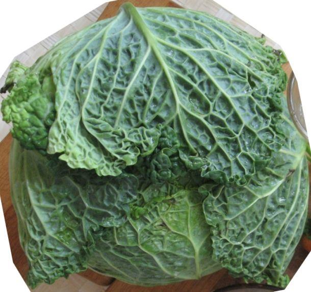 Савойская капуста рецепт салат