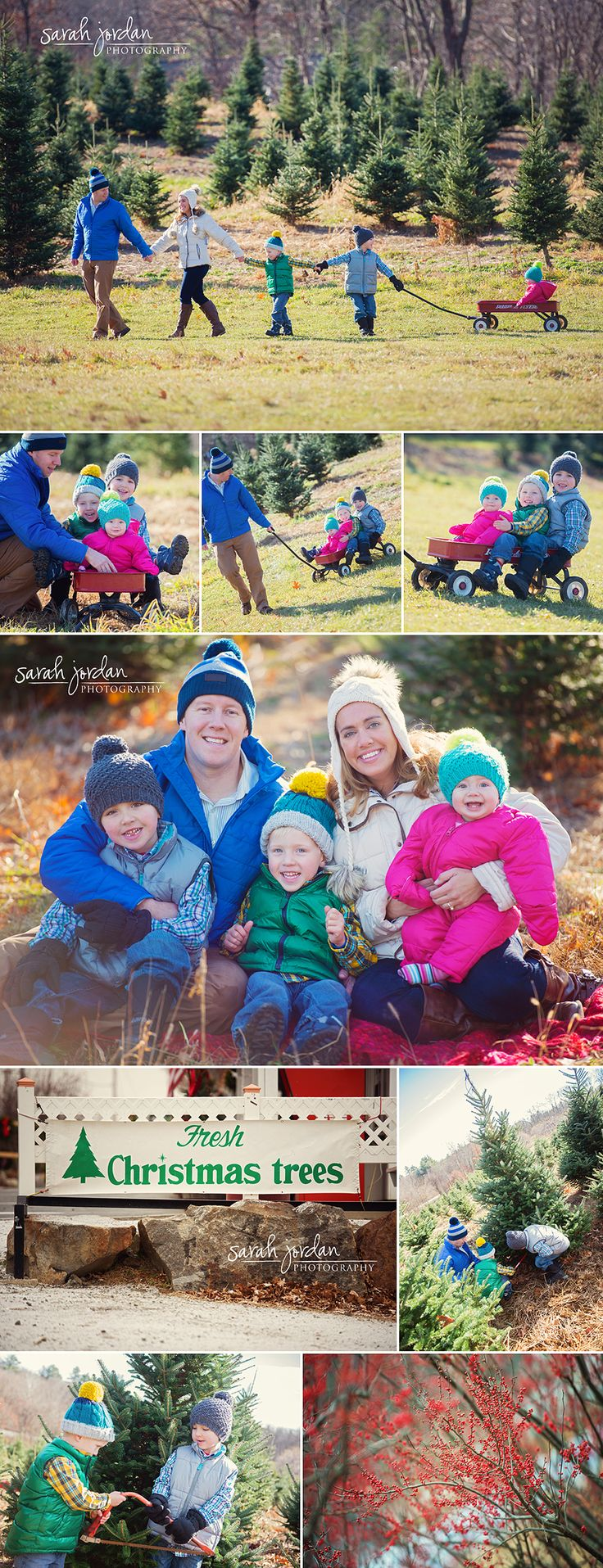 Christmas Tree Farm session line walking pulling cute family outdoors winter or summer spring autumn