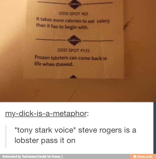 Steve the Lobster