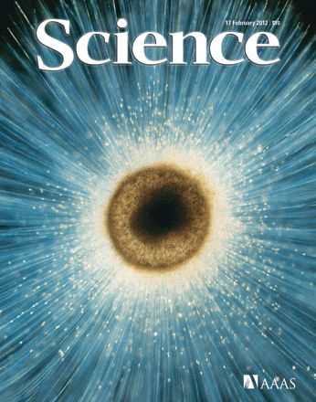 Science magazine.  I get the online format and am behind in my reading.