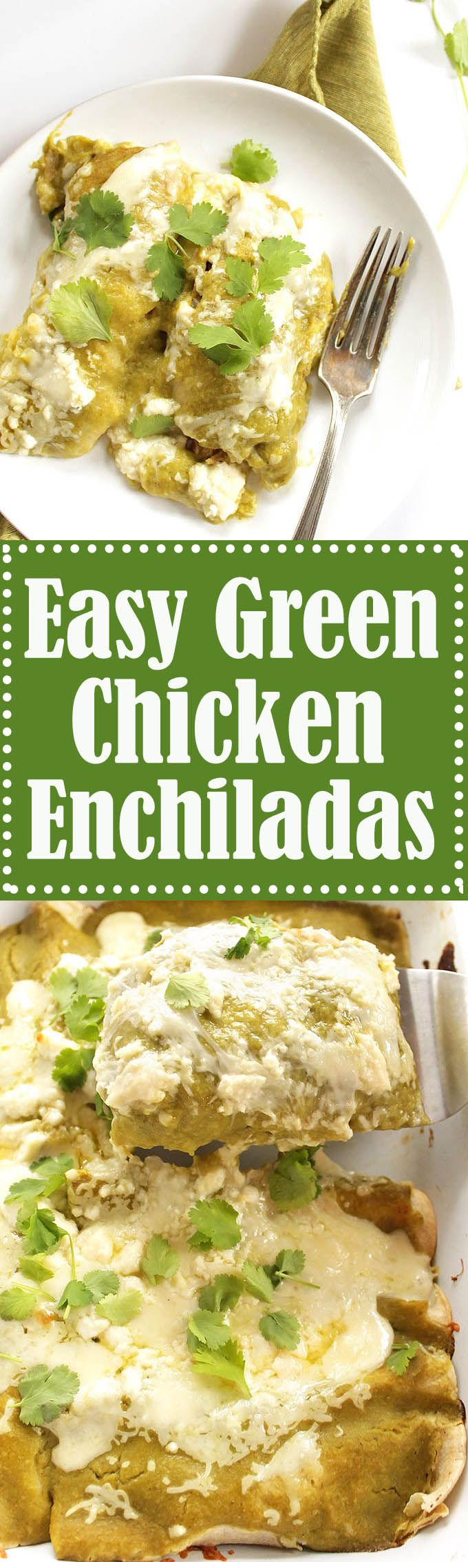 Easy Green Chicken Enchiladas - BEST ENCHILADAS! Stuffed with cheese and shredded chicken. Topped with roasted green enchilada sauce! Perfect for a weeknight meal! Gluten Free | robustrecipes.com