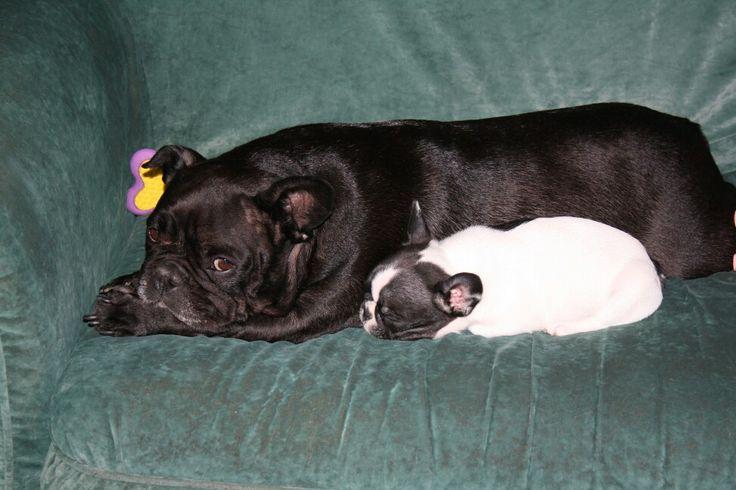 Yuna veille sur le bébé