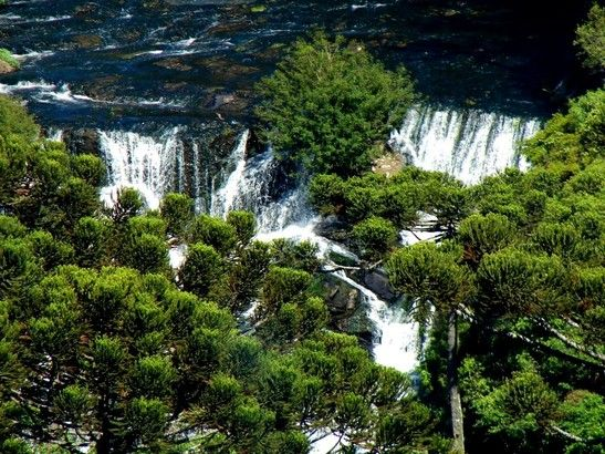 Trekking to the Beauty of wayanad. a scene of Pakshipathalam. Vythiri, best resorts in Kerala.