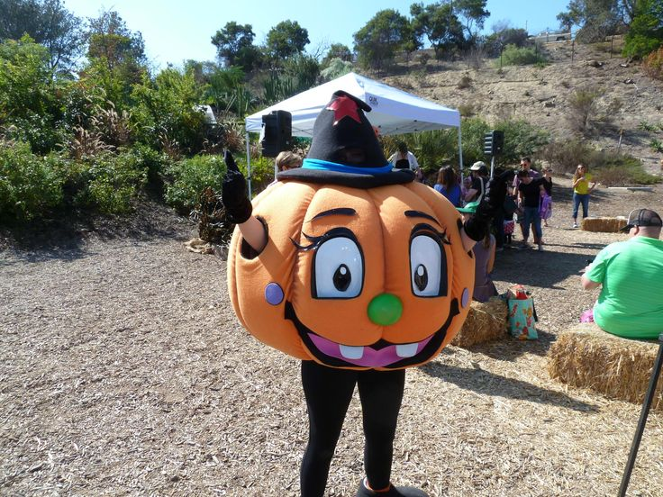 14 best images about family fall festival on pinterest - Botanic gardens pumpkin festival ...