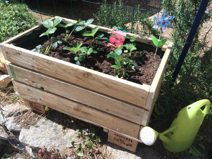 Les 25 meilleures id es concernant jardiniere en palette sur pinterest meuble balcon - Construire cabane jardin tours ...