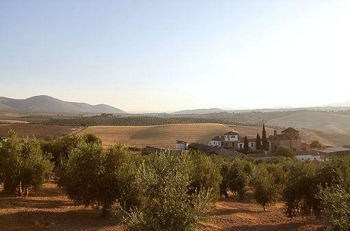 Surroundings – Cortijo del Marqués · A unique rural hotel in Granada, Andalusia