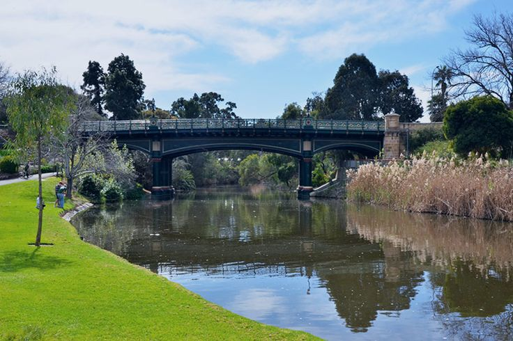 Picturesque Picnic Spots in Adelaide   True Local Blog