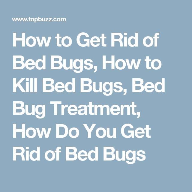 How to Get Rid of Bed Bugs, How to Kill Bed Bugs, Bed Bug Treatment, How Do You Get Rid of Bed Bugs