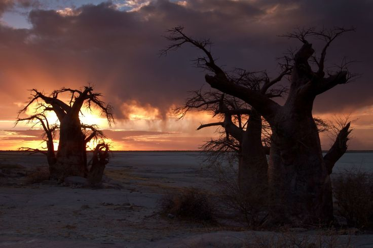 Breathtaking photograph of a Botswana sunset by Henning de Beer. My photo! pretty cool