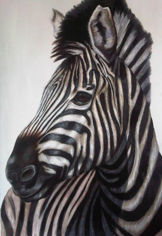 Zebra 2 - Pastel on Paper Artist: Ellenor Hastie