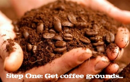 How to reuse your coffee grounds - in your beauty routine, around the house and in the yard