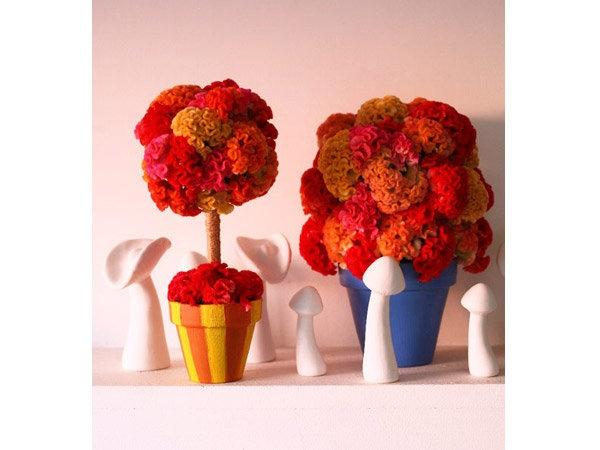 秋の訪れには、フランス庭園風のトピアリーを