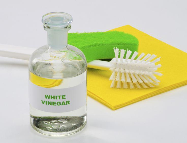 Le vinaigre blanc est la solution rêvée pour faire un ménage écolo et économe dans toute la maison. Découvrez toutes les facettes magiques de ce produit et devenez vinaigre addict.