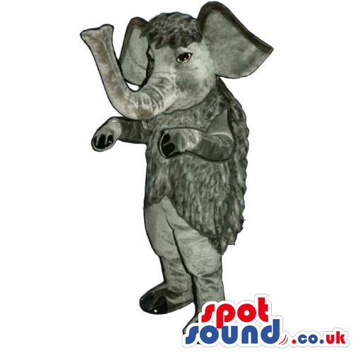 #elephant #mascots from #spotsound_uk -Discover all our #elephants#mascots #costumes for your marketing events on : http://www.spotsound.co.uk/102-elephant-mascots - 7 sizes available with fast shipping over the world ! We can also customize your future #elephant #mascot ! Visit us ;)