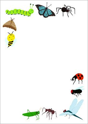 Minibeasts notepaper...Decorative notepaper, a perfect accessory for your mark making area when exploring the theme of minibeasts. #insects #minibeasts