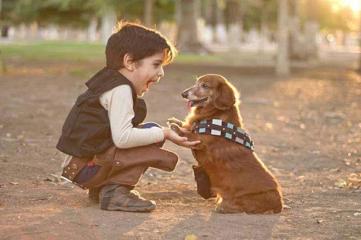 Mini-Han and Mini-Chewie