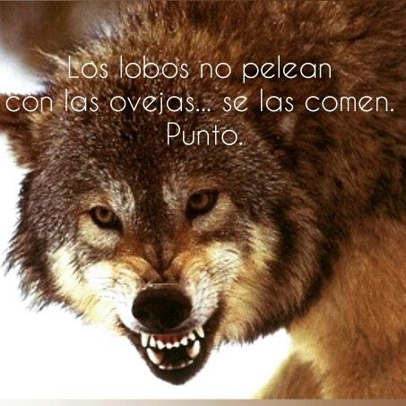 Wolves                                                                                                                                                                                 Más