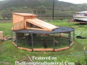 Chicken Coop Made From A Trampoline Frame – 5 Pictures | The Homestead Survival