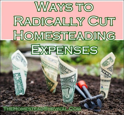 """Ways to Radically Cut Homesteading Expenses Homesteading  - The Homestead Survival .Com     """"Please Share This Pin"""""""