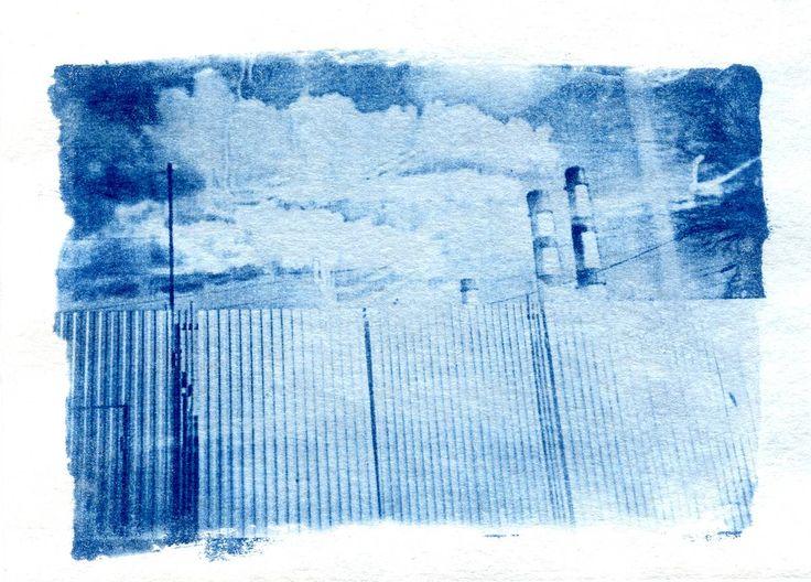 Цианотипия. Синим по белому · Lomography