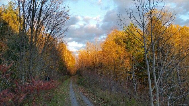 Cataraqui Trail near Perth Road Village