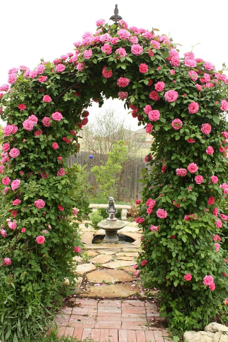 Arbor leading to rose garden room with fountain and I'd add seating and lots more fragrant plants.