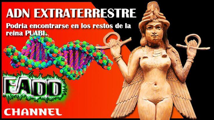 Evidencia de genoma extraterrestre anunnaki en los restos de la reina PU...