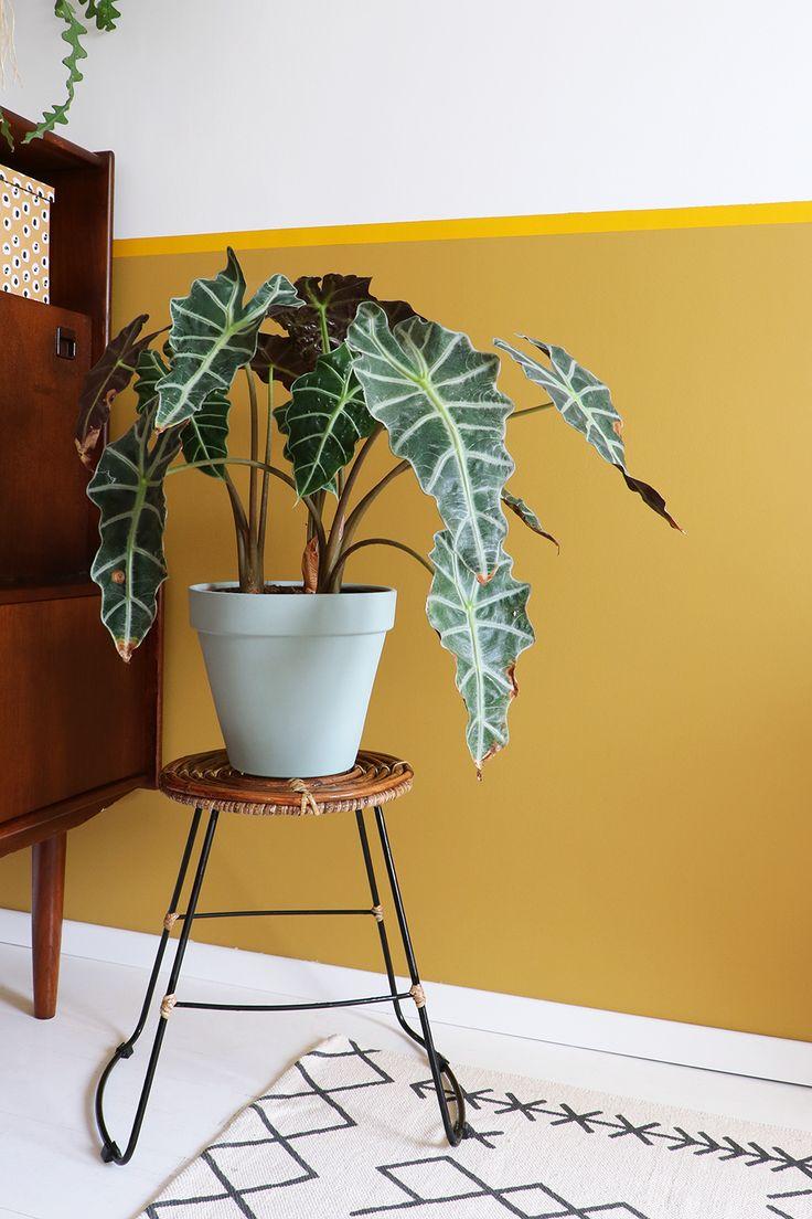 MY ATTIC SHOP / retro stool / rotan kruk / rattan / vintage / plant    Photography: Marij Hessel  www.entermyattic.com