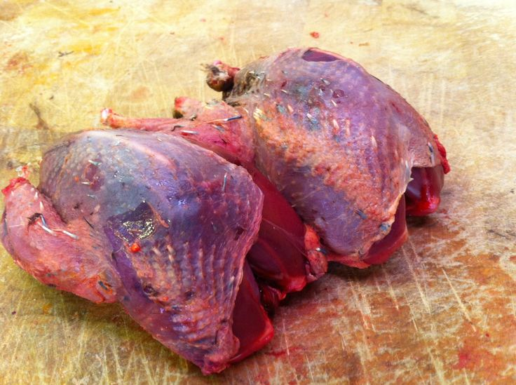 The 'Glorious' 12th (August) sees the start of the shooting season. The first birds on the menu are Grouse. Dark fleshed and well flavoured and only in season until December. Don't miss out on them.