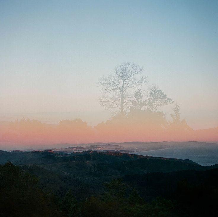 Mount Tam - Film double exposure  #Hasselblad #mediumformat #mounttam #mttam #120mm #doubleexposure #ellonature #ellofilm
