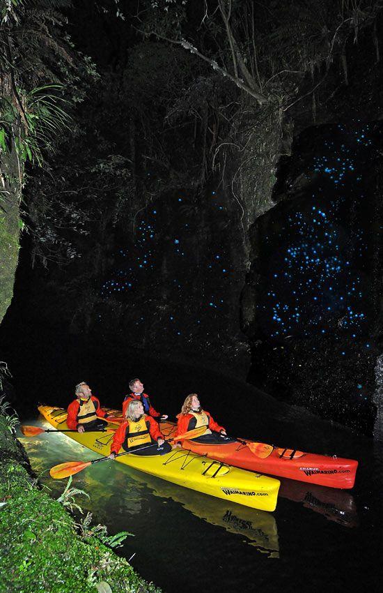 Night-kayaking New Zealand!! Lake Rotoiti Glow worm kayak tour in Rotorua, New Zealand