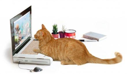 Škrabadlo ve tvaru laptopu pro kočku