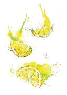 Giclee feine Kunstdruck: Zitrone Scheiben Aquarell…