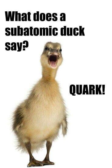 Physics humor???
