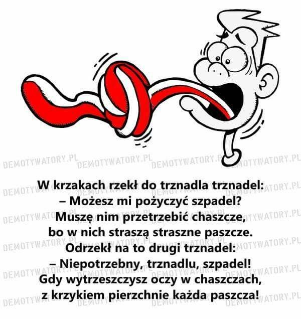 Trznadel