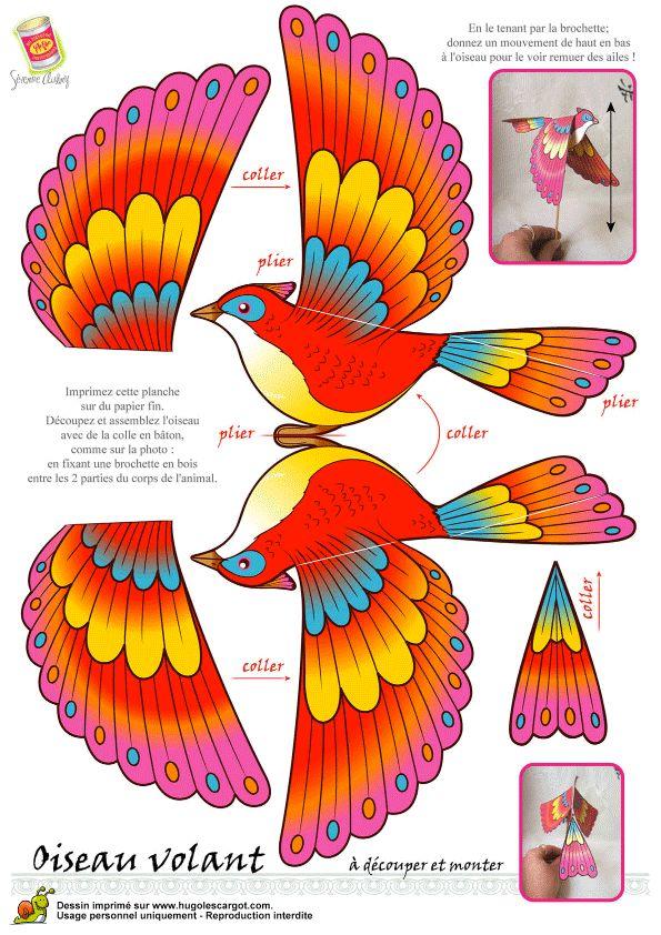 Oiseau Legende Couleur, web page 6 sur 24 sur HugoLescargot.com