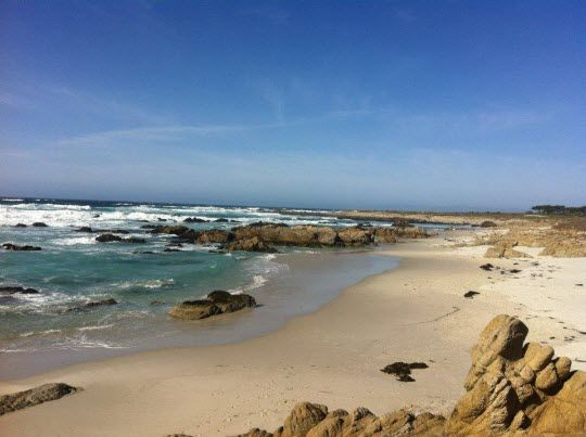 Go on a Pacific Coast Highway road trip! #travel #california