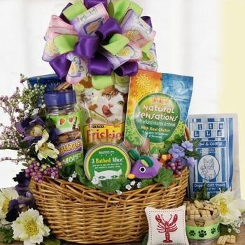 12 best hcr fundraisers easter basket images on pinterest frisky cat gift basket is awesome a large assortment of favorite treats this kitty gift really delivers in a big way scrumptious crunchy treats and catnip negle Image collections