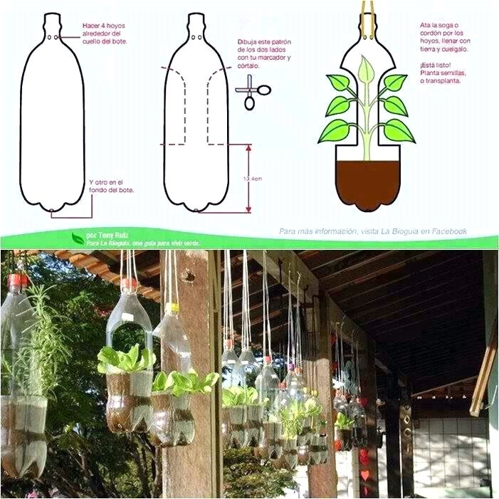 These are great diy hanging planters not to mention its a great way to reuse soda bottles instead of dumping them in the local landfill