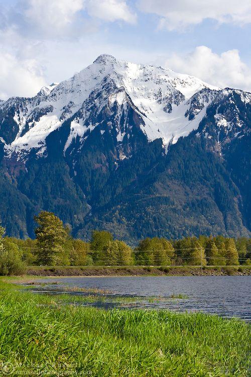 Mount Cheam from Seabird Island near Agassiz, British Columbia, Canada
