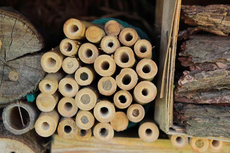 ber ideen zu insektenhotel bauen auf pinterest. Black Bedroom Furniture Sets. Home Design Ideas