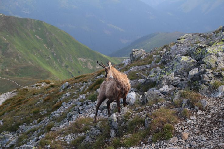 Klín-Západní Tatry