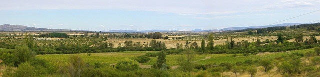 Valle en Cauquenes by Gata faldera, via Flickr