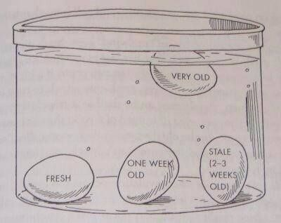 How to tell how old eggs are.