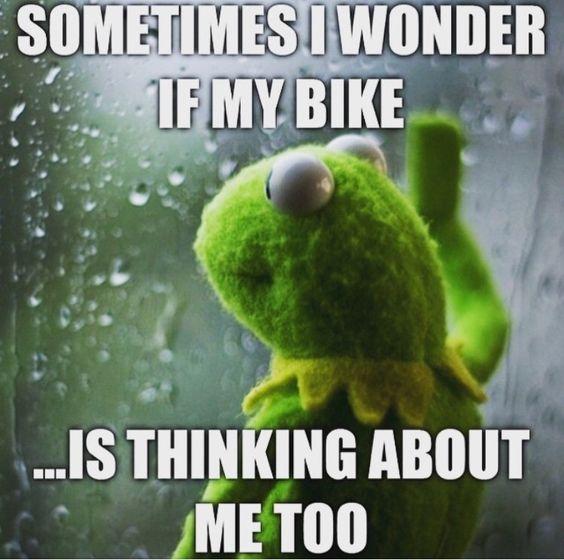 Sometimes I wonder... haha