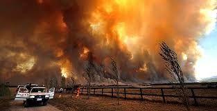 black saturday bush fires - Google Search