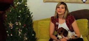 How to Make your own retro tinsel Christmas tree « Christmas Ideas