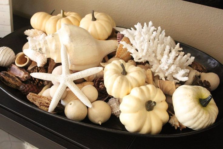 Pumpkins and seashells go surprisingly well together!